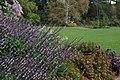 Green Spring Gardens in October (22373086458).jpg