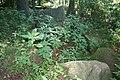 Großsteingrab Holzhausener Kellersteine 1 08.JPG