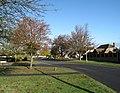Grove Park, Tring - geograph.org.uk - 1554733.jpg