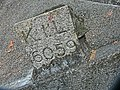HK 油麻地 Yau Ma Tei 九龍華仁書院 Kowloon Wah Yan College Kln Inland Lot 後山 山坡上 KIL no 6059 marbl rock stone.JPG