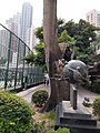 HK CWB 銅鑼灣 Causeway Bay 摩頓台 Moreton Terrace tree October 2019 SS2 03.jpg