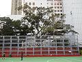 HK KowloonPark ChineseBanyan 2011.JPG