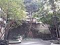 HK WC 灣仔 Wan Chai 皇后大道東 Queen's Road East May 2020 SS2 09.jpg