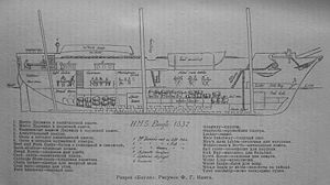 HMS Beagle 1832 longitudinal section.jpg