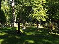Hargla kalmistu hauad.JPG