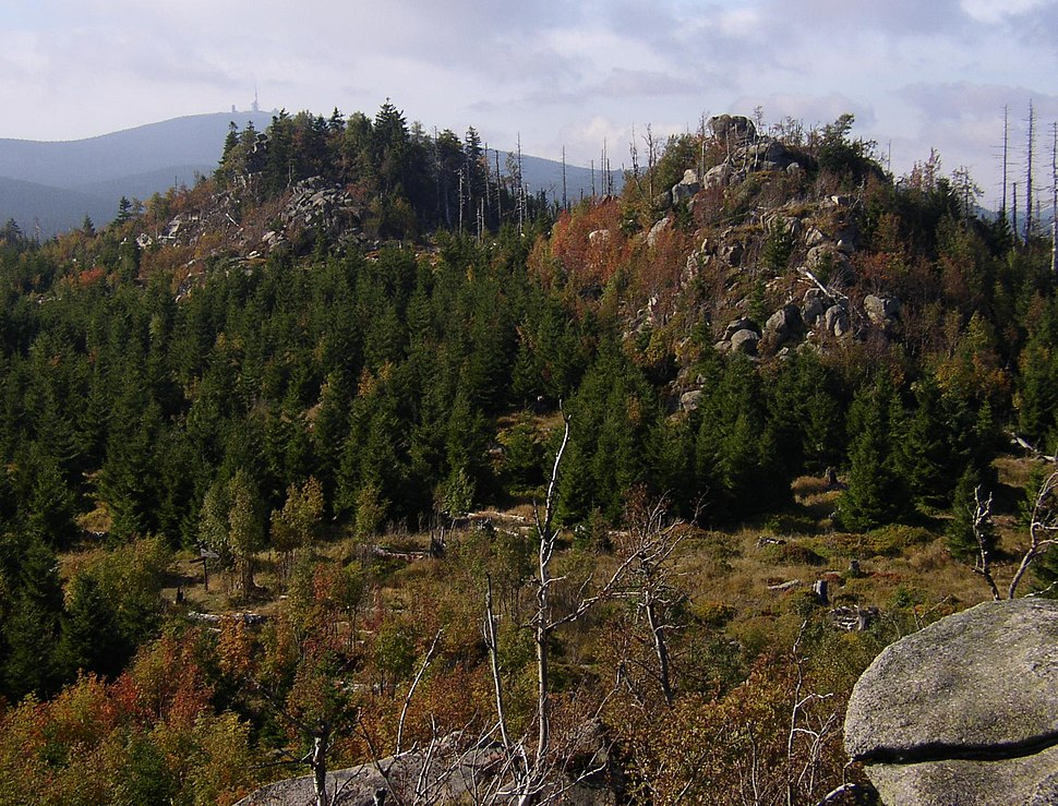 Harz Leistenklippe Brocken