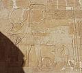 Hatshepsut temple5.JPG