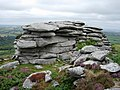 Hawk's Tor - geograph.org.uk - 223244.jpg