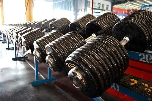 Heavy Dumbbells 200 pound