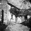 Hiša, Osp 51 1949.jpg