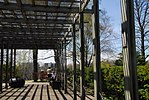 High Park, Toronto DSC 0247 (17393205051).jpg