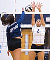 High school volleyball 6885 (37595607822).jpg