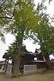 Hijiri-ichou1200.jpg