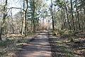 Hildener Heide 2016 081.jpg