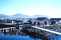 Hill Cove, West Falkland.jpg