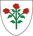 Historical Burzenland Rasnov CoA.png