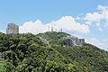 Hong Kong Views from Victoria Peak IMG 5301.JPG
