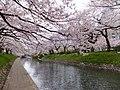 Honmachi, Toyama, Toyama Prefecture 930-0029, Japan - panoramio (9).jpg
