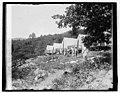 Hoover camp on the Rapidan, 8-17-29 LCCN2016843916.jpg