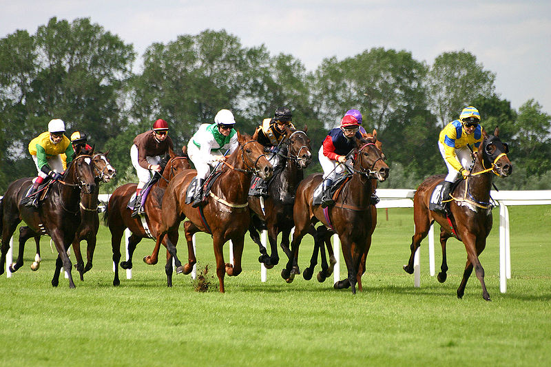 File:Horse-racing-1.jpg