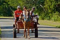 Horse and Carriage - Cuba.jpg
