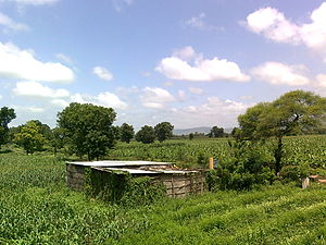 Hut - Hut in farm outside Indian village