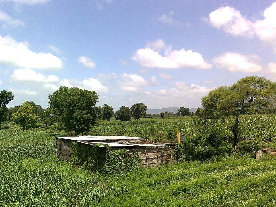Hut in Maharashtra