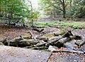 Hyde Park - geograph.org.uk - 1544636.jpg