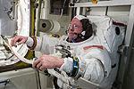 ISS-42 EVA spacesuit checks Barry Wilmore.jpg