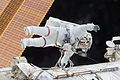 ISS-46 Contingency EVA (d) Scott Kelly.jpg