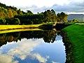 I Like The Pines - panoramio.jpg