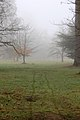 Ickworth House, Suffolk, England -mist-2March2012.jpg