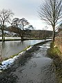 Icy and muddy tow-path - geograph.org.uk - 1154738.jpg