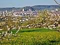Im April Blick nach Herrenberg mit Schlossberg und Stiftskirche - panoramio.jpg