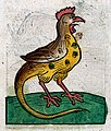Image of a cockrel. woodcut, 1547 Wellcome L0029222.jpg