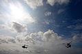 In the sky (2521513560).jpg