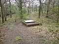 Incongruous man-lid, Swithland Woods - geograph.org.uk - 1250895.jpg