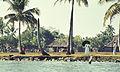 India-1970 035 hg.jpg