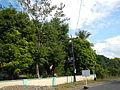 Infanta,Pangasinanjf0262 31.JPG