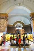 Interior view - Royal Museum for Central Africa - DSC06929.JPG