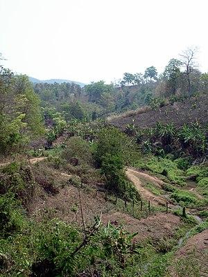 Inthakhin - Countryside around the Mae Ping Elephant School, Inthakhin