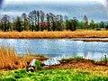 Inverted World - panoramio.jpg
