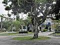 Isabela barrio-pueblo, Puerto Rico 05.jpg