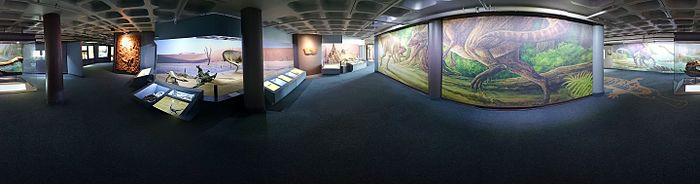 Iziko Exhibition Ethnology Photosphere.jpg