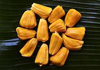Семена Джекфрут (Artocarpus heterophyllus)