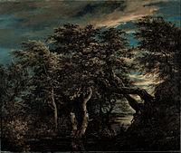 Jacob Isaacksz van Ruisdael - A Marsh in a Forest at Dusk - Google Art Project.jpg