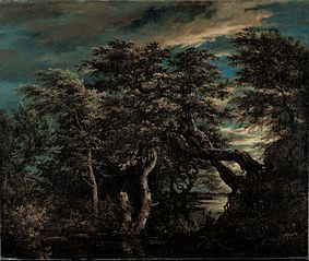 A Marsh in a Forest at Dusk
