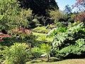 Japanese Garden, Mayne (7846568182).jpg