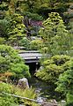 Japanese Tea Garden (San Francisco) (TK4).JPG