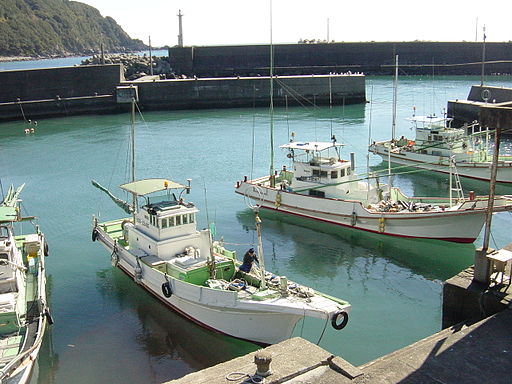 Japanese squid fishing boats